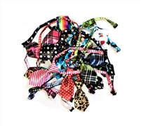WAGS 10 ct. Assorted Dog Ties
