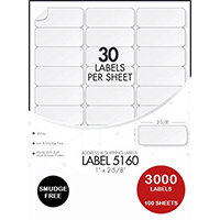 Avery 5160 Compatible Address Labels (100 sheets, 30 labels per Sheet)