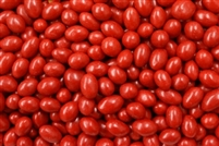 Boston Baked Beans - 5 LB Bag