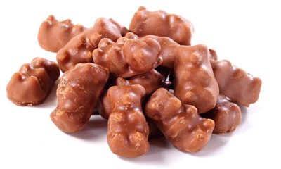 Chocolate Covered Gummi Bears - 8 LB Container