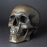 Human Skull Darkened Bronze