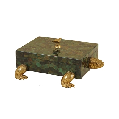 Green Penshell Turtle Box