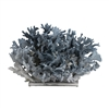 Natural Blue Coral on Acrylic Base