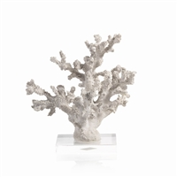 White Sampler Coral on Acrylic Base
