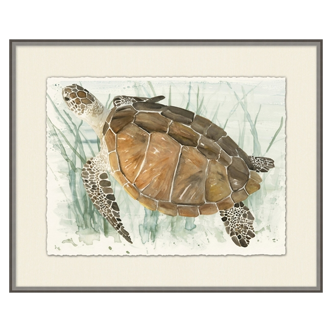 Watercolor Turtle II