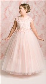 Willow Floor Length Gown: BLUSH