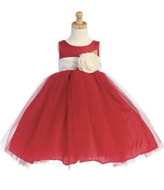 Kelly Tulle Dress (Removable Sash)
