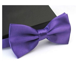 Boys Silky Satin Bowtie - PURPLE