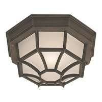 1-LT Fluorescent Cast Aluminum Outdoor Flush Mount