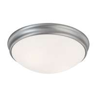 2-LT Ceiling Light
