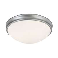 3-LT Ceiling Light
