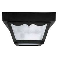 2-LT Outdoor Poly Ceiling Light
