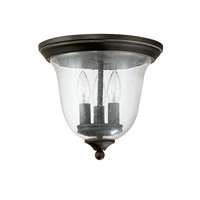 3-LT Outdoor Ceiling Light