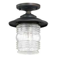 1-LT Outdoor Ceiling Light
