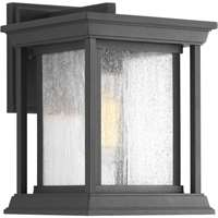 Endicott 1-LT Outdoor Small Wall Lantern