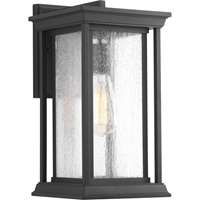 Endicott 1-LT Outdoor Medium Wall Lantern
