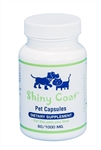 pet skin problems vitamins for hot spots