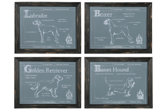 "UTC17508-AST Wood Rectangle Wall Art with Black Distressed Frame with ""Dog Breeds Theme"" Printed Assortment of Four Coated Finish Gray"