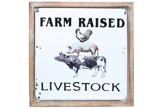 "UTC17711 Metal Square Wall Art with Wood Frame and ""FARM RAISED LIVESTOCK"" Printed Coated Finish White"