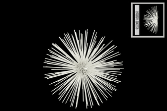UTC21919 Metal Sea Urchin Ornamental Sculpture Wall Decor MD Coated Finish White