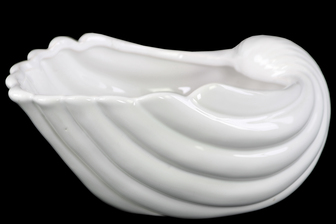 UTC28820 Ceramic Clam Seashell Valve Sculpture Gloss Finish White