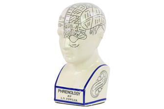 UTC32400 Ceramic Phrenology Bust with Printed Labels LG Gloss Finish White