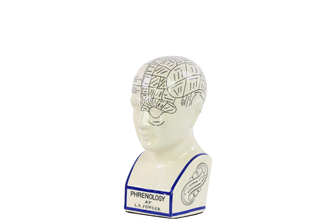 UTC32401 Ceramic Phrenology Bust with Printed Labels MD Gloss Finish White