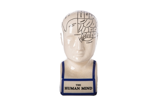 UTC32402 Ceramic Phrenology Bust with Printed Labels SM Gloss Finish White