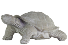 UTC35723 Cement Standing Turtle Figurine with Head Turned to the Side Concrete Finish Gray