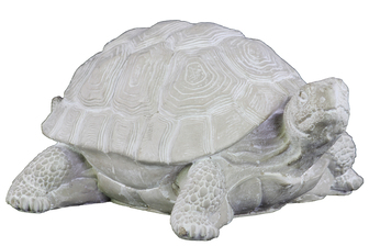 UTC37206 Cement Standing Turtle Figurine Washed Concrete Finish White