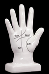 UTC40058 Ceramic Palmistry Hand Sculpture on Base with Printed Line Diagram Gloss Finish White