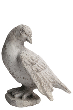 UTC41520 Cement Cardinal Standing Bird Figurine in Wings Spread Looking Downright Position on Flat Base Distressed Finish Gray