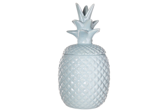 UTC44239 Ceramic Pineapple Canister with Top Removable Lid LG Gloss Finish Sky Blue