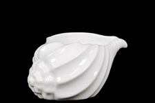 UTC73100 Ceramic Conch Seashell Figurine SM Gloss Finish White