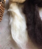 Texas Teeswater Roving:  creamy white/natural black, 2 oz