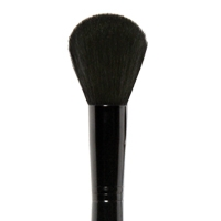KABUKI POWDER BRUSH