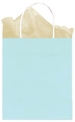 Natural Solid Medium Kraft Bags | Party Supplies