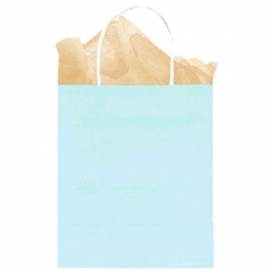 Light Blue Solid Medium Kraft Bags | Party Supplies
