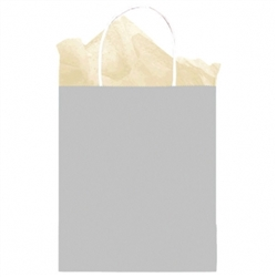 Silver Solid Medium Kraft Bags | Party Supplies