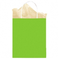 Kiwi Solid Medium Kraft Bags | Party Supplies