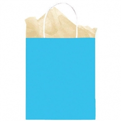 Caribbean Solid Medium Kraft Bags | Party Supplies