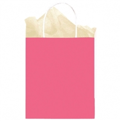 Fuschia Solid Medium Kraft Bags | Party Supplies
