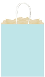 Light Blue Solid Large Kraft Bags | Party Supplies