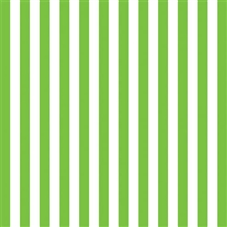 Kiwi Stripe Gift Wrap | Party Supplies