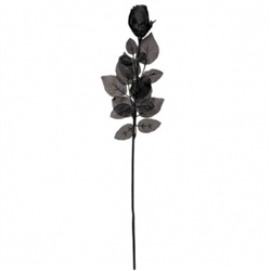 Black Rose | Party Supplies