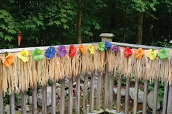 Luau Deck Fringe | Party Supplies