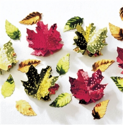 Leaves 3-D Confetti Mix | Party Supplies