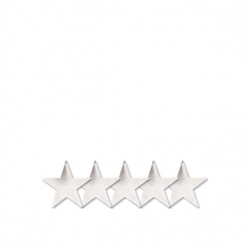 "Silver 5"" Foil Star 