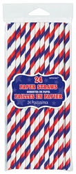 Paper Straws with Stripes | Party Supplies