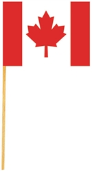 Canadian Flag Picks | Canadian Themed Party Supplies